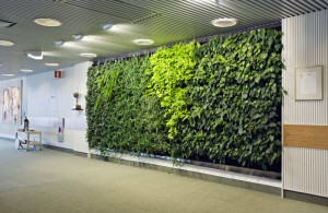 Green Wall Design Malmo