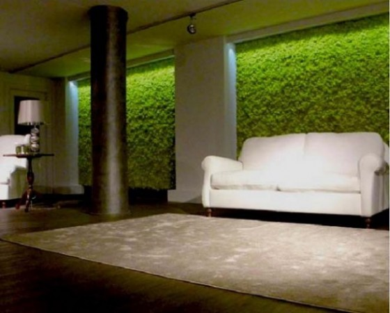 Green Wall Interior